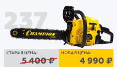 237.jpg